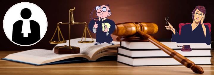 Capture avocats