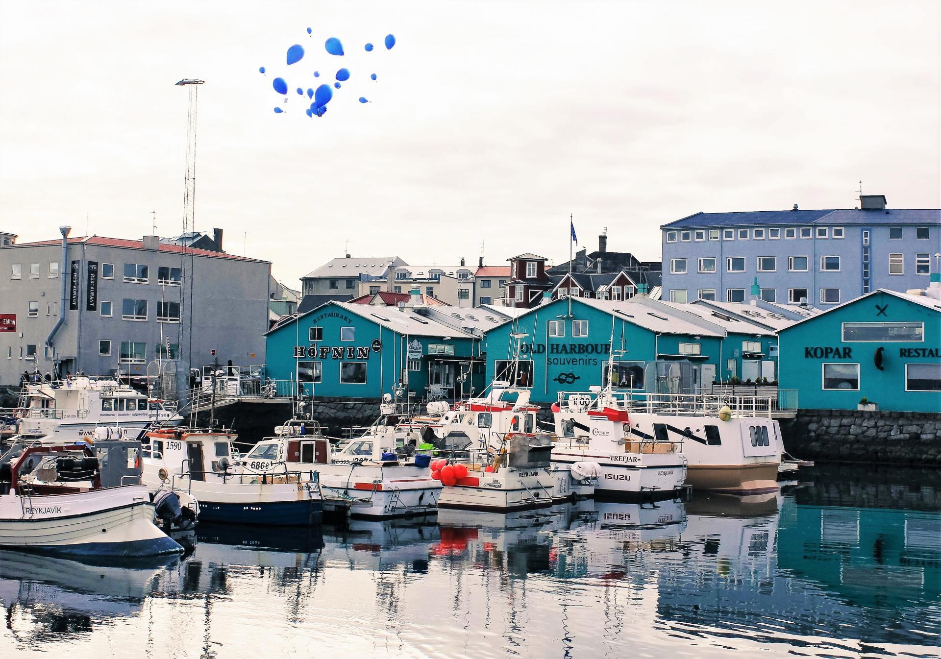 Reykjavik 3